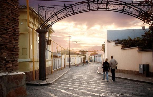 Евпаторийское отделение «ОПОРЫ РОССИИ» предлагает скорректировать проект Правил благоустройства города