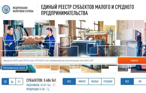 ФНС усовершенствовала функционал поиска в Едином реестре субъектов МСП